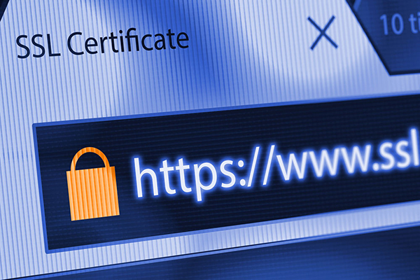 Why You Need to Secure Your Website with HTTPS and SSL